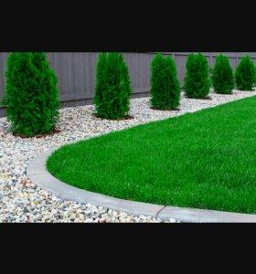 Красота в саду!!!