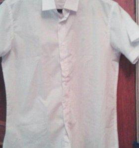 мужские белые рубашки 50-52