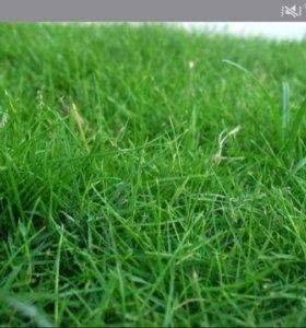 Уберу траву
