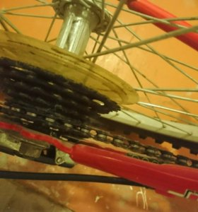 Велосипед Bachini Vision