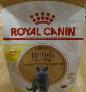 ROYAL CANIN BRITISH