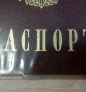 Перевод паспортов набор текста.