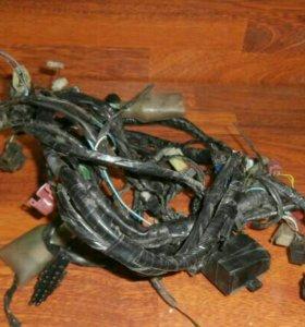 Проводка Honda CBR900RR 98 - 99г (Хонда
