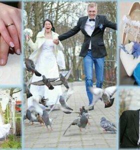 Свадебная съёмка+фотокнига