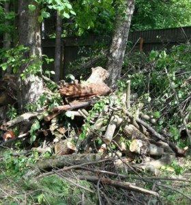 Удаление деревыев