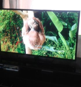 Телевизор BBK.и подставка..