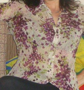 Блузки  4 шт