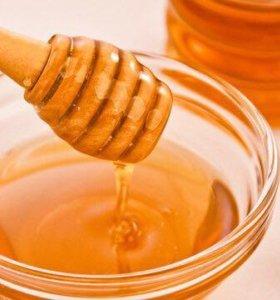 Мёд с сосновой почкой