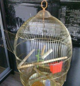Клетка для птиц ( попугаев )