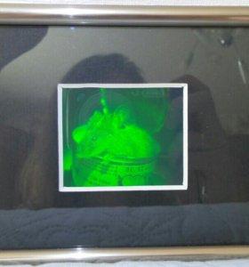 Голографическая картина 3D мал. новая