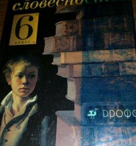 Русская словесность 6 класс