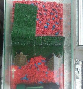 Аквариум (террариум) для черепах