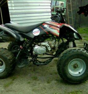 Квадроцикл ABM skorpion 125