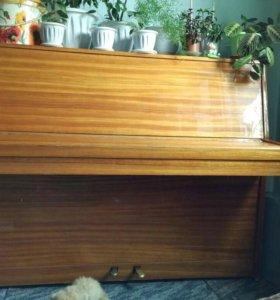 Пианино отдам.