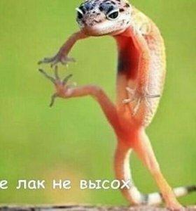 Гель-лаки.шелак