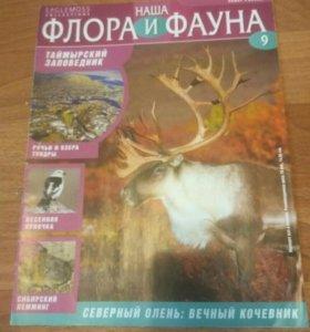 Журнал флора и фауна