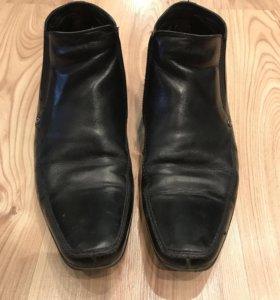 Мужские осенние ботинки mascotte