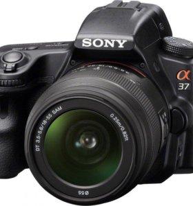 Sony SLT-A37+ сумка(торг)