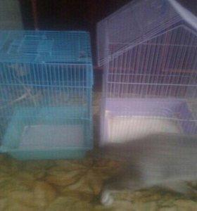 Клетки для птицы и грызунов