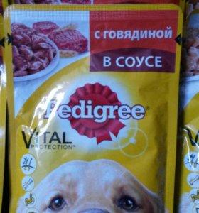 Корм для собак Пэдигри