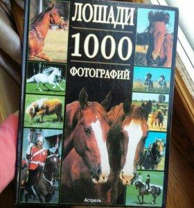 """Книга """"Лошади 1000 фотографий"""""""