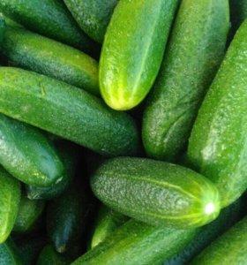 Овощи/фрукты. Здоровая Еда. 121314