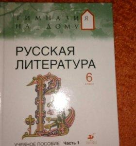 Учебник по литературе 6 класс,1 часть