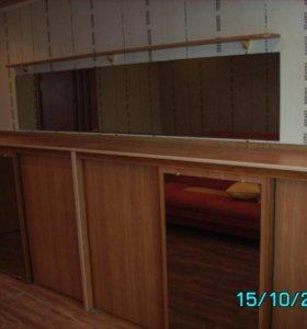 Любая корпусная мебель по вашим размерам