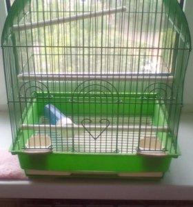 Клетка попугая