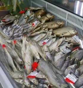 Рыба в ассортименте