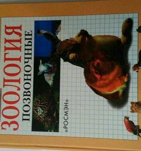 Зооология Позвоночные
