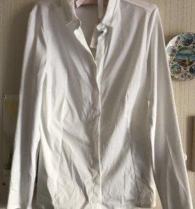 Рубашка Peserico