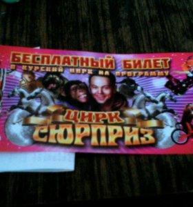 """Билет в Курский цирк на прграмму """"цирк сюрприз"""""""