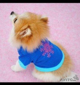 Одежда (кофта) для собак мелких пород