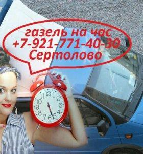 Газель на час в Сертолово, бюджетный вариант