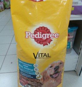 Педигри для взрослых собак всех пород