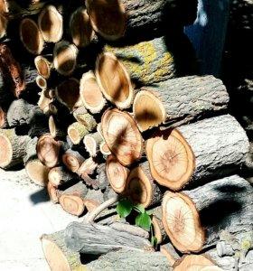 Дрова тутового дерева
