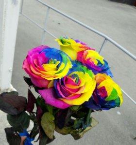 Букет 5 радужных роз