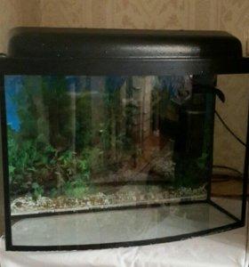 Б/у аквариум + фильтр