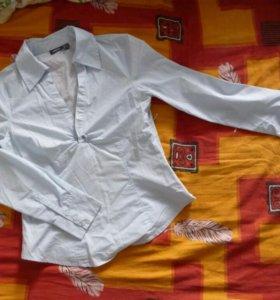 Рубашка, блузки