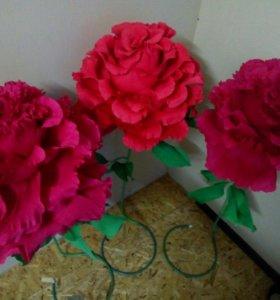 Большие цветы, розы.