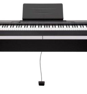 Пианино Касио