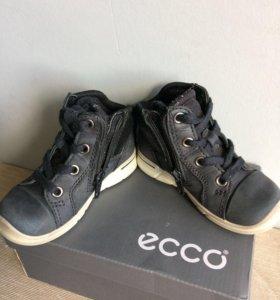 Ботинки Ecco 22 размер