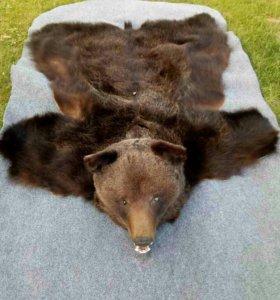 Ковер из шкуры медведя с головой