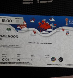 Билет на футбол (Германия-Камерун)