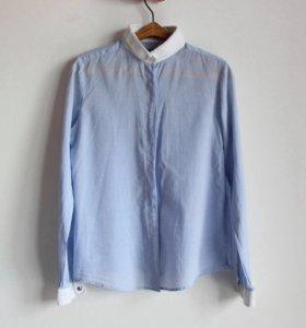 Голубая рубашка Collin's