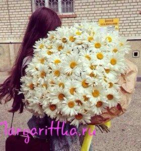 Букет ромашек, букет цветов, цветы