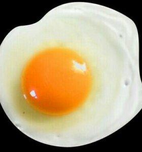 Яйца домашние деревенские!!!