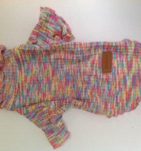Одежда для собаки, новый свитер