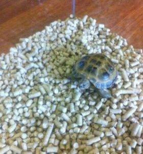 (Воз) наполнитель для сухопутной черепахи